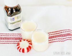 Easy 3 Ingredient DIY Peppermint Lip Balm