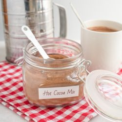 Homemade Hot Cocoa Mix (Dairy-Free)