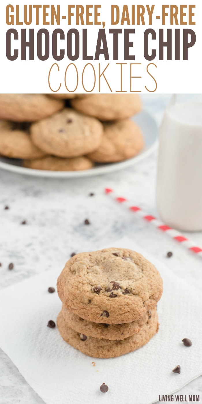 Easy Sugar Free Chocolate Chip Cookies