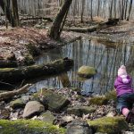 4 Benefits of Taking Your Kids Hiking