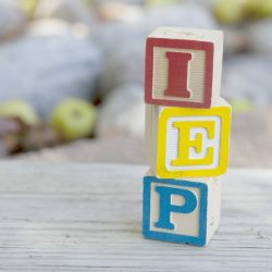 17 Things Autism Moms Want You to Know About IEPs and Your Child