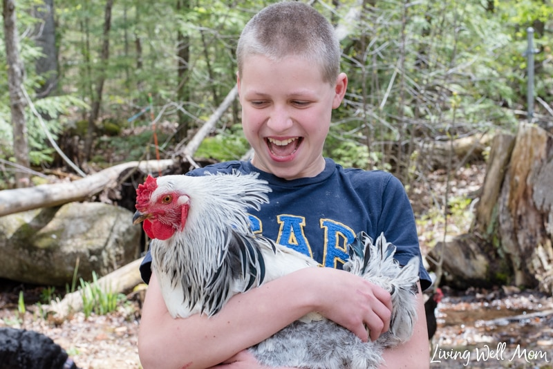 a boy holding his rooster