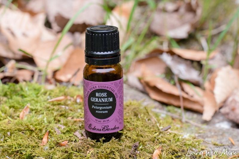 rose geranium essential oil - how to make a DIY all natural tick repellent
