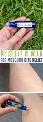 DIY essential oil roller for mosquito bite relief