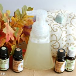 DIY Pumpkin Spice Foaming Hand Soap