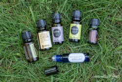 Homemade Essential Oil Mosquito Repellent Spray + Roller Blend
