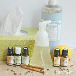 DIY Immune Boost Foaming Hand Soap