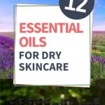 12 essential oils for dry skincare with lavender