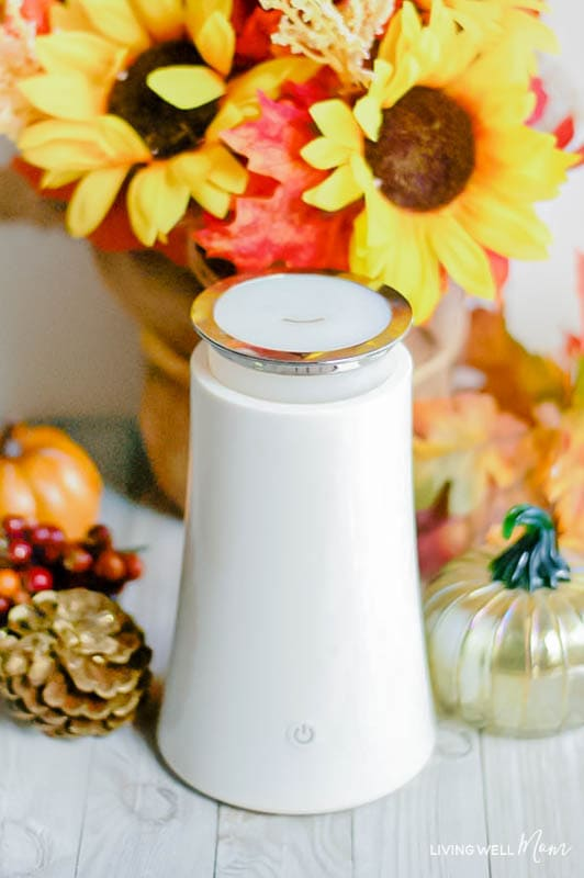 essential oil diffuser with fall decorations behind it