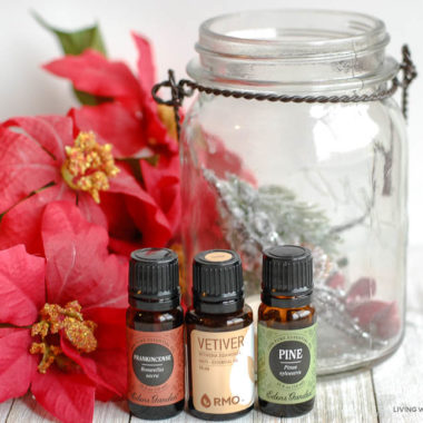 some essential oils, a spray bottle, and a glass jar