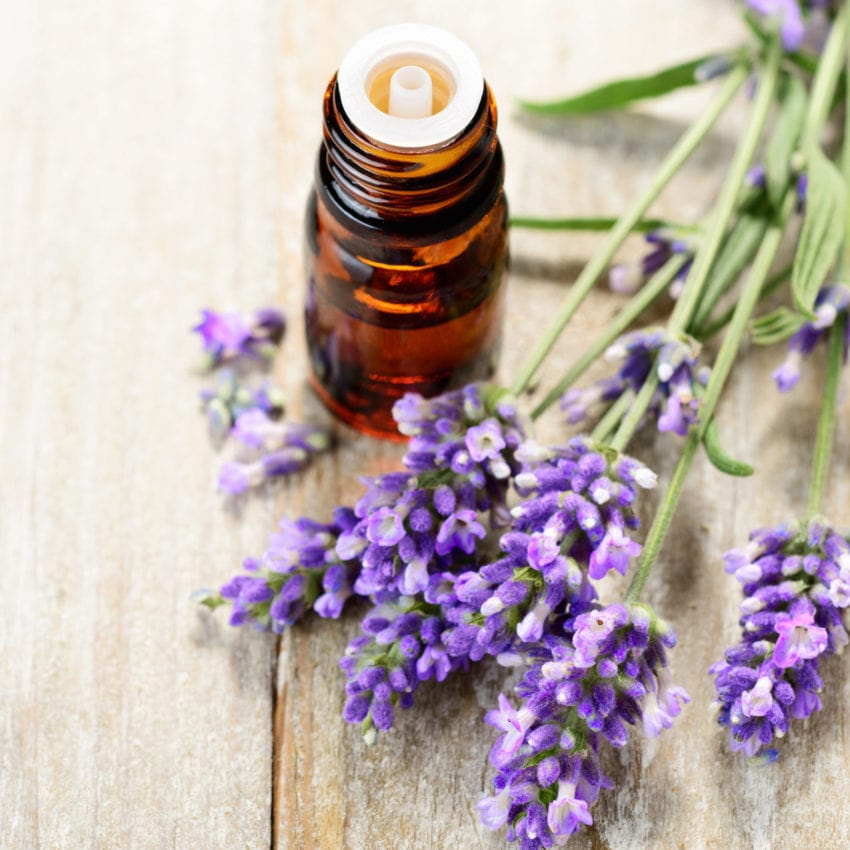 close-up of brown essential oil bottle with lavender flowers