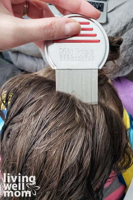 combing girl\'s hair with lice comb