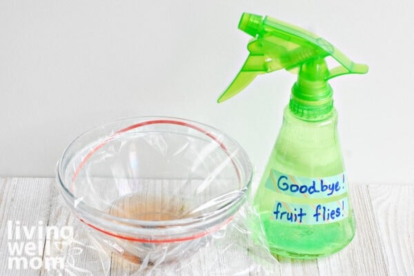 Fruit fly trap with apple cider vinegar next to a spray of fruit fly repellent