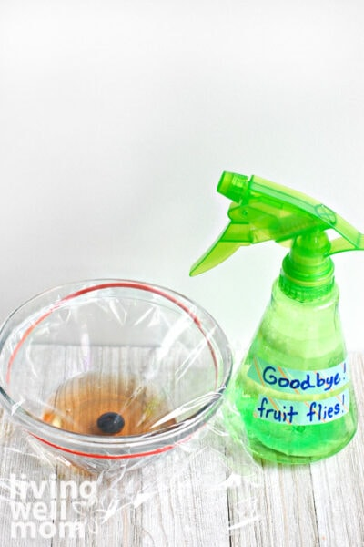 Fruit fly trap next to a DIY repellent
