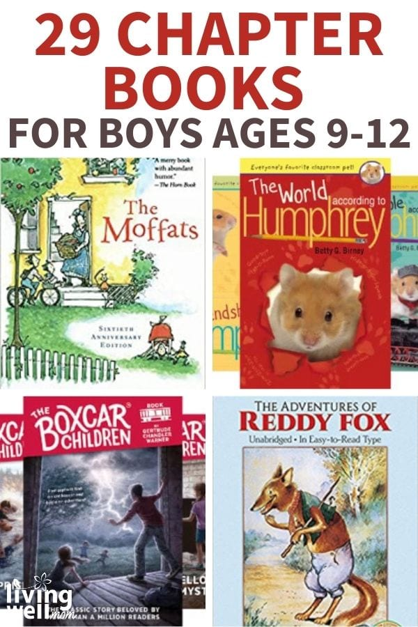 collection of chapter books for boys ages 9-12