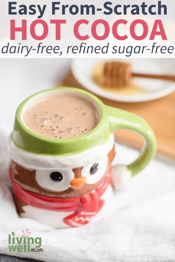dairy free hot cocoa in a owl mug