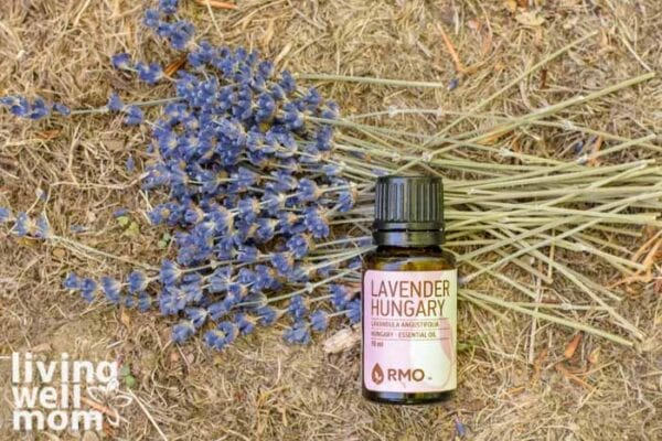 lavender essential oil for treating fire ant bites