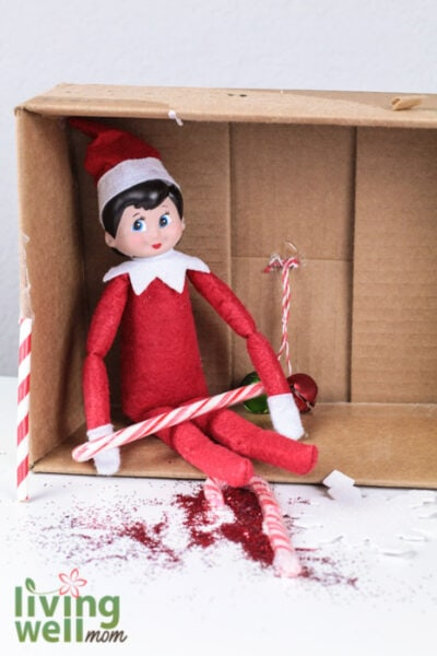 elf on the shelf holding a candy cane inside of a cardboard box