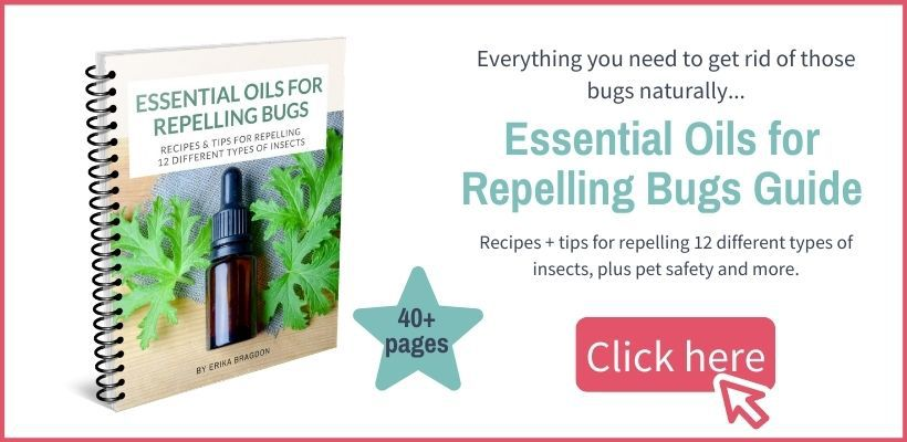 essential oils for repelling bugs ebook with text graphic