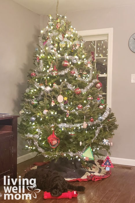 How to keep a christmas tree alive with three simple tips