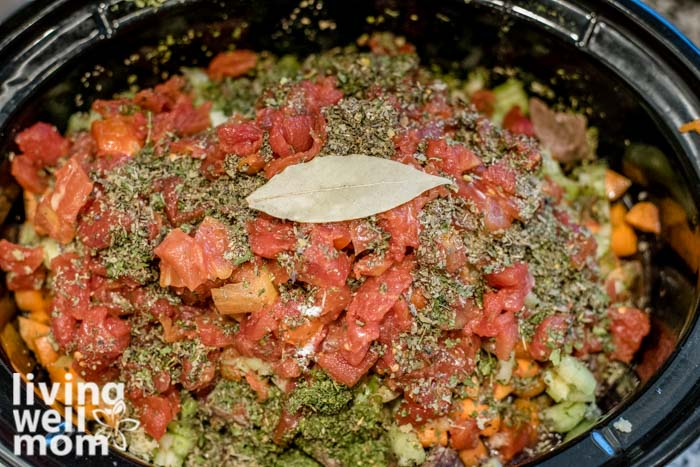 beef stew crock pot recipe before cooking