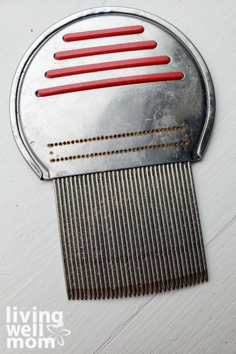 comb for lice treatment at home