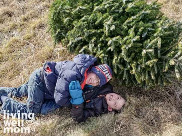 Kids playing next to a freshly cut christmas tree